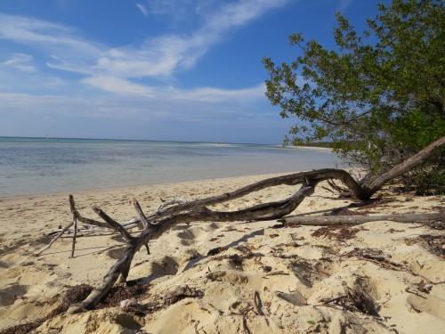 private beach cayo coco cuba suzanne carillo
