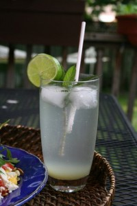 efreshing summer mint cocktail