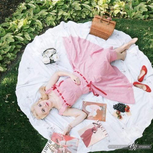 vintage picnic scene
