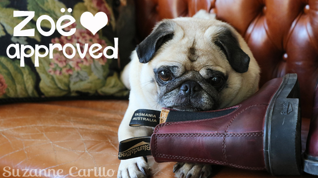 Pug approved blundstone boots for fall suzanne carillo style for women over 40