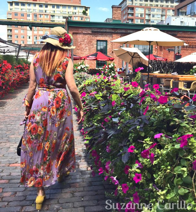 distillery district flowers suzanne carillo