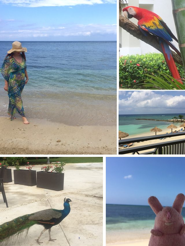 Yamon Jamaica vacation 2018 Suzanne Carillo