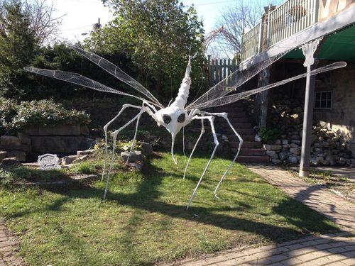 Massive dragonfly