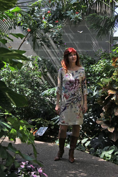 Suzanne butterfly zara dress