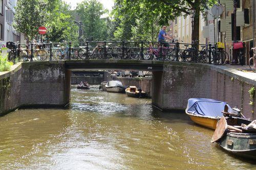 Canals of amsterdam suzanne carillo style files