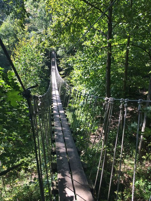 Zip lining Ontario Suspension bridge long point eco adventures southern ontario canada